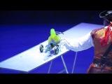 Дрессированные попугаи.Цирк 22 12 2013